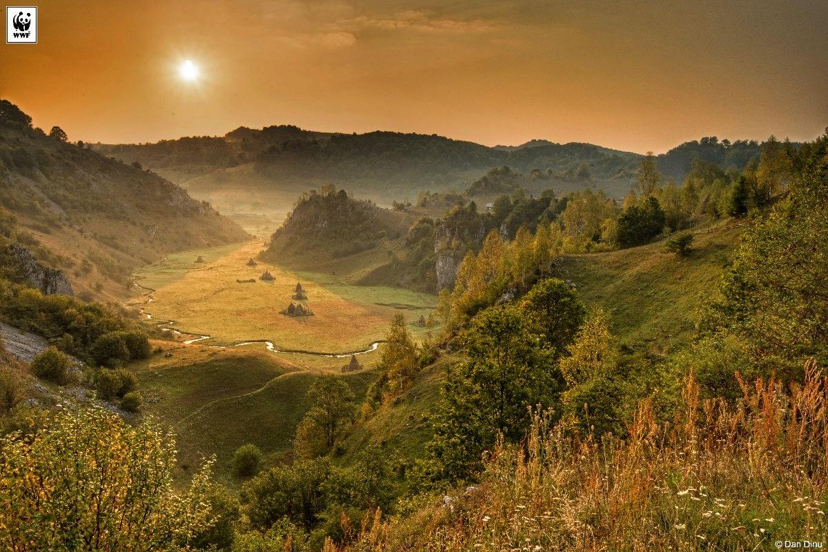 Parcul Natural Gradistea Muncelului Cioclovina Sit Natura2000 Copyright Dan Dinu Copy 1200x800 01