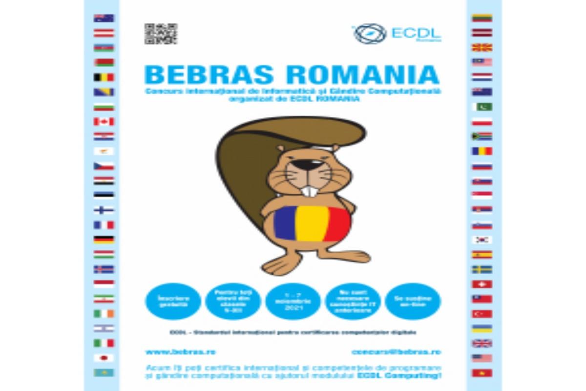 Bebras Copy 1200x800